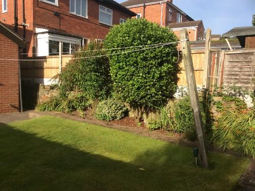 Help With Garden Design Please