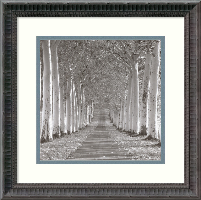 "Charlie Waite 'Epernay, France' Framed Art Print 16""x16"" - Contemporary - Artwork - by Amanti Art"