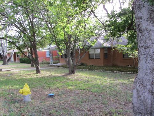 help me landscape my front yard