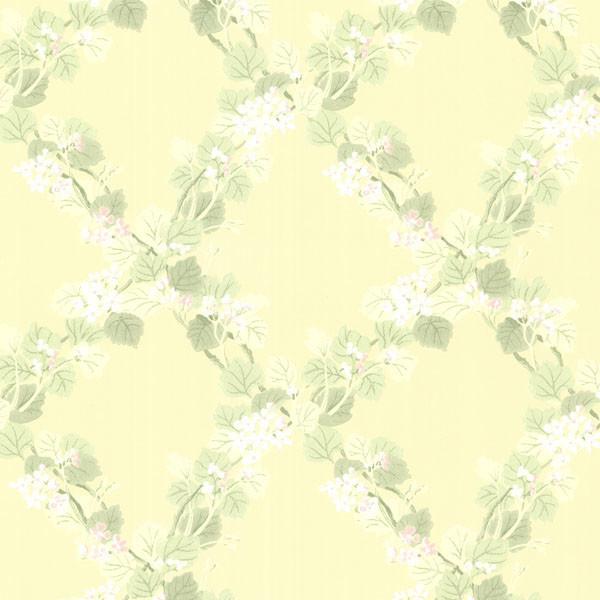 Yellow Trellis Wallpaper: Delphia Yellow Jasmine Trellis Wallpaper, Bolt