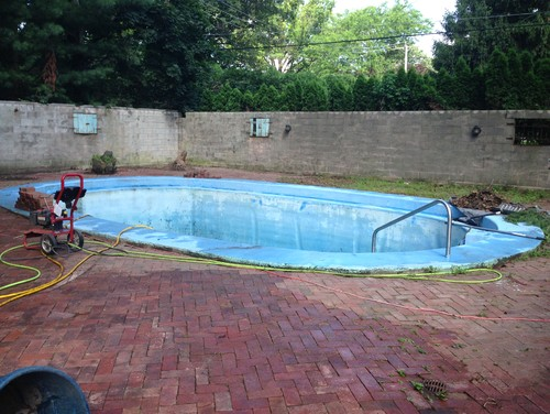 Need help with pool landscape for Pool design help