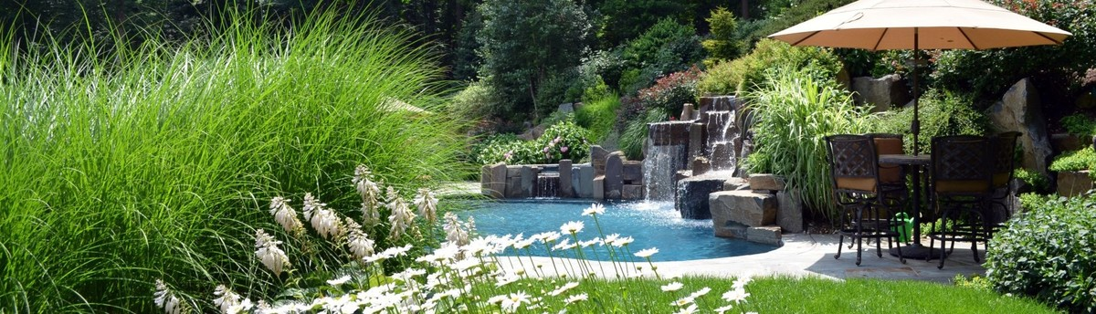 Association of professional landscape designers for Professional landscape design