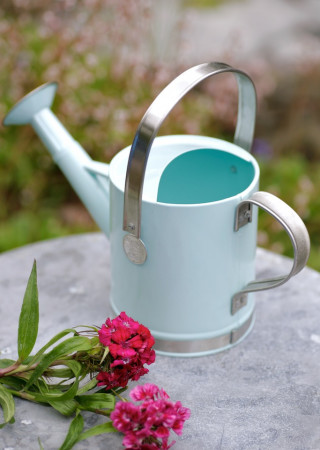 Keep love blossoming all year long with these marvelous mini watering cans. Perfectly proportioned and complete with spout and handle, these metal minis make great garden-themed favors for your outdoor bridal shower, engagement party, or spring nazhatie-skachat.gqd Location: , CA.