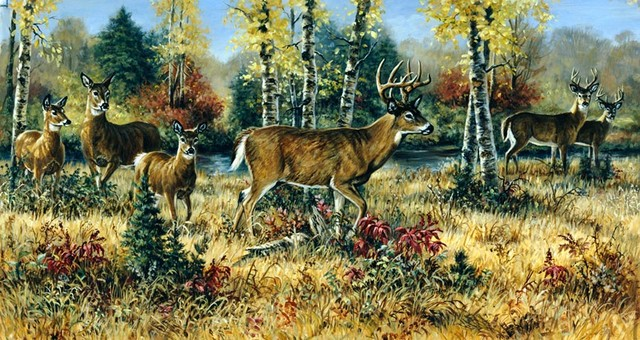 Buck and doe wall mural rustic wallpaper by murals for Deer wallpaper mural