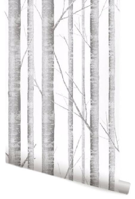 birch tree wallpaper traditional - photo #5