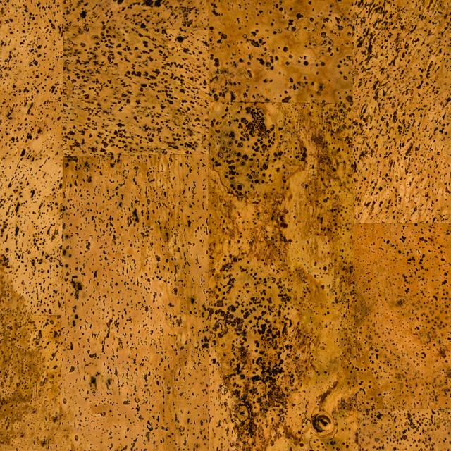 Types Of Cork Floors Modern Flooring Brisbane