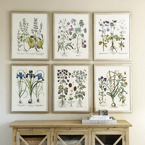 Indigo botanical framed print traditional prints and for Traditional kitchen wall decor