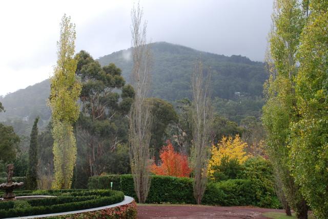 andrew renn design beautiful gardens of melbourne andrew renn design beautiful gardens of melbourne
