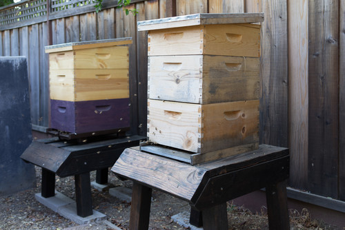 Here's a simple setup that can be completed by purchasing individual modular apiary segments. The pieces resemble file cabinet drawers and can be stacked as high as you like, then topped with a roof.