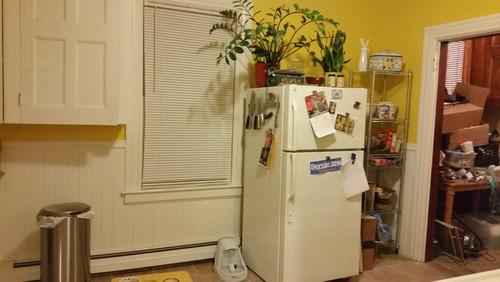 Old House Kitchen Renovation For Rental Unit