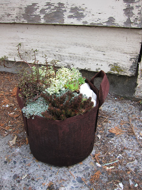 Brown and silver planters eclectic outdoor pots and for Garden pots portland