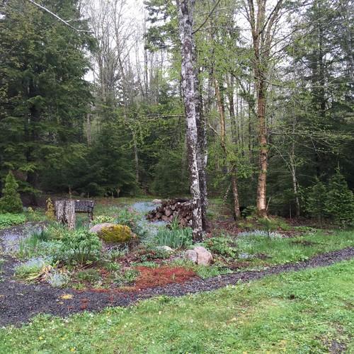Help me relax and enjoy my cottage garden for Help design my garden