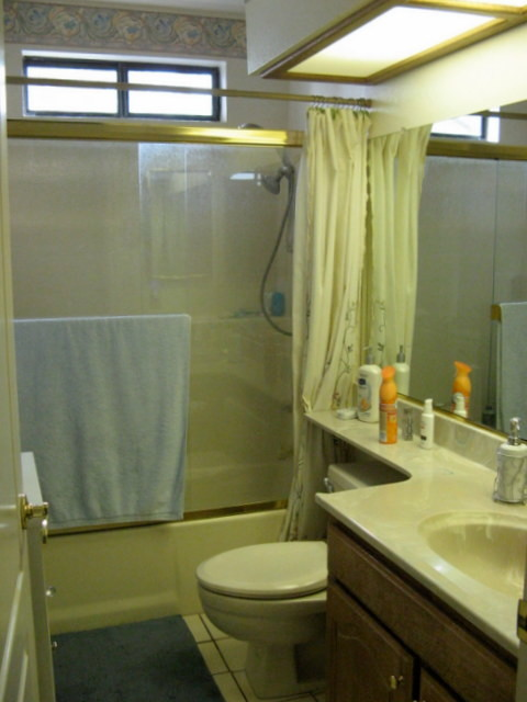 Hall Bathroom - Before and After