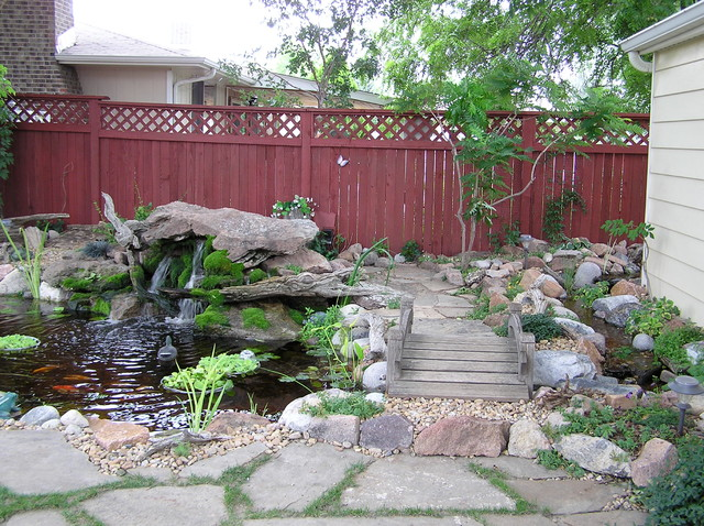 Ponds and waterfalls traditional denver by rocky for Koi pool water gardens thornton