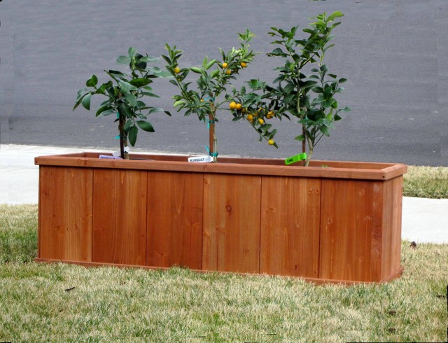 box planters 2