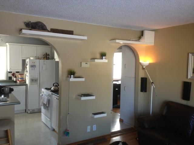 Ikea Lack Cat Shelves