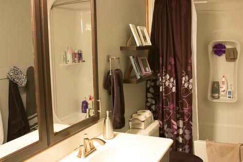 What color should i paint the frames What color should i paint my bathroom