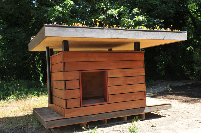 Sustainable dog house for Architecture and design dog house