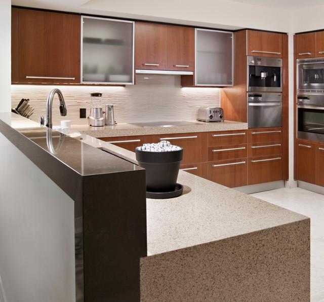 Downtown Miami Condominium Update Contemporary