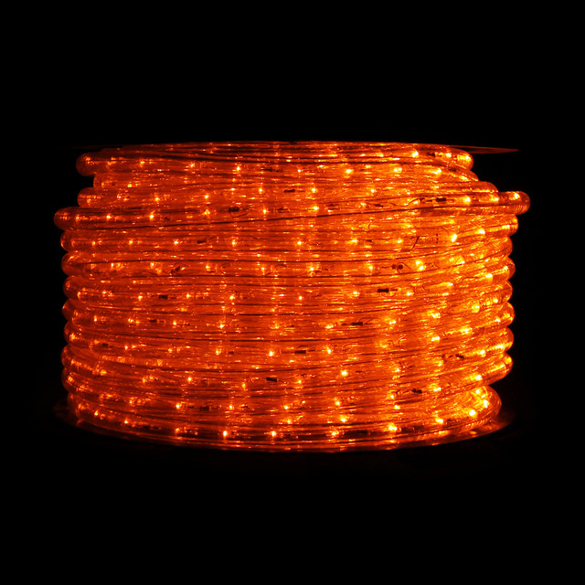 Led String Lights Orange : Orange LED Rope Light - 148 ft reel - Traditional - Lighting - san diego - by ...
