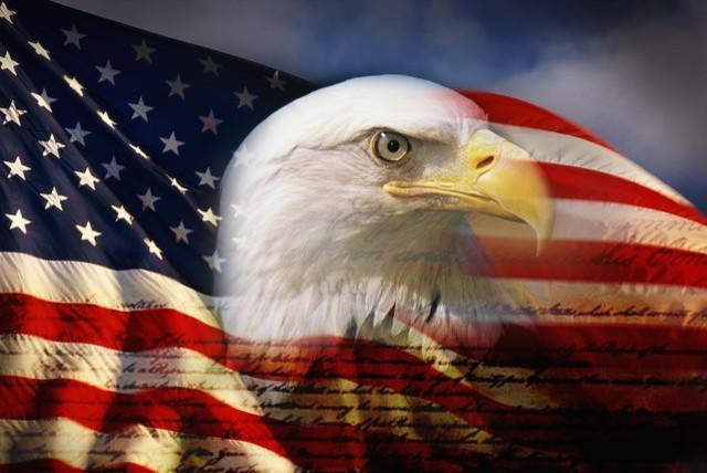 Bald eagle head and american flag peel and stick for American flag wall mural