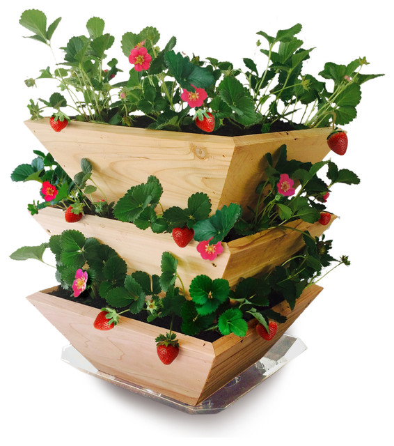 Cedar Wood Strawberry Patch Tower Planter - Farmhouse - Indoor Pots And Planters - by Architec™