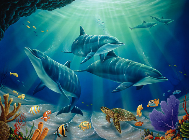 Dolphin family wall mural contemporary wall decals for Dolphins paradise wall mural