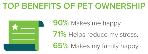 Pet Survey