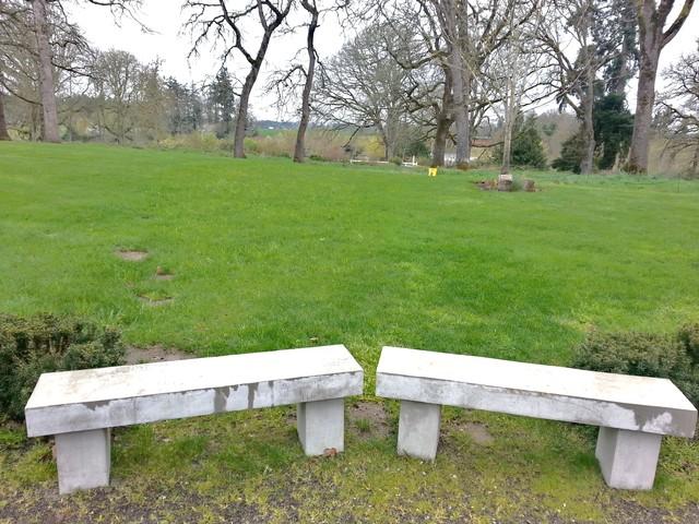 Garden art pergola xeripave pervious paver cobble for Home rain garden design