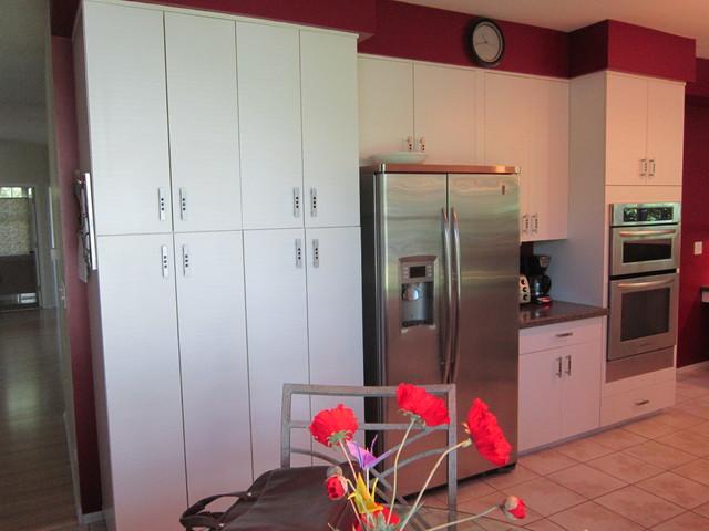 zurich kitchen transitional kitchen chicago by cabinets plus