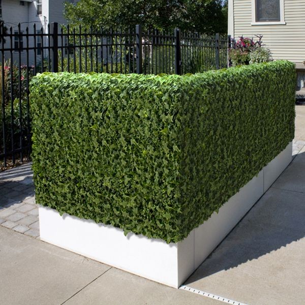 Artificial Outdoor Ivy Hedge Flowers Plants And Trees Chicago By Home Infatuation