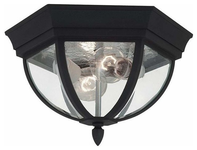 2 Light Ceiling Black Traditional Outdoor Flush mount