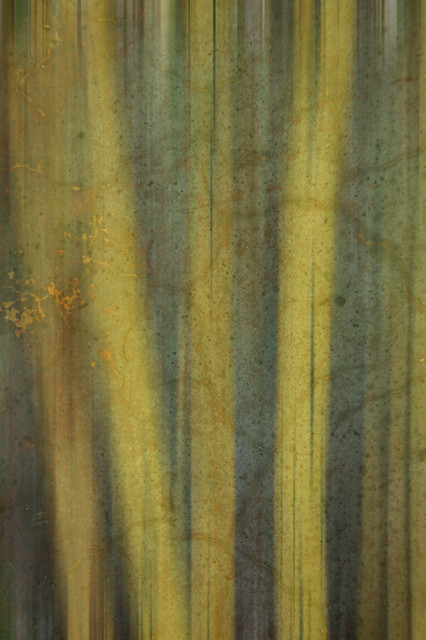 Bamboo element wall mural contemporary wallpaper by for Bamboo wall mural wallpaper