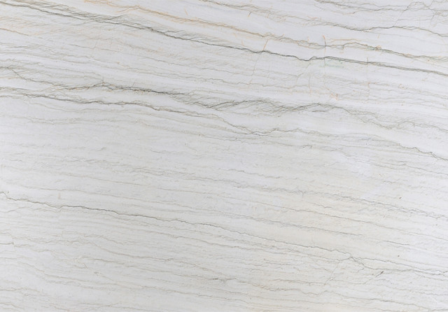 Bianco Quartzite Slab Contemporary Kitchen Countertops