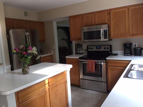 Need Help Updating My Kitchen