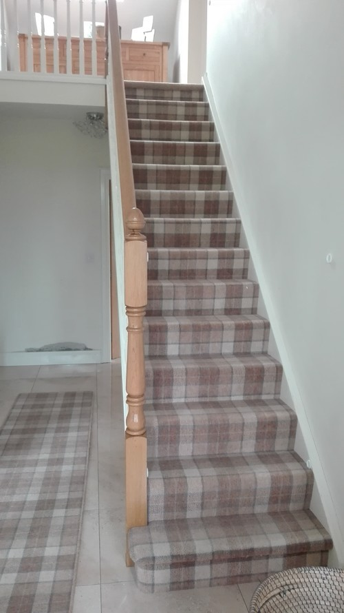 Would You Put Wallpaper With This Carpet