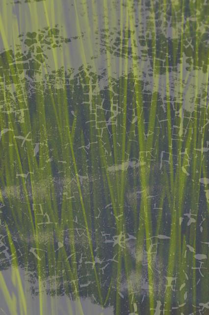 Bamboo headboard 1 wall mural contemporary wallpaper for Bamboo wall mural wallpaper