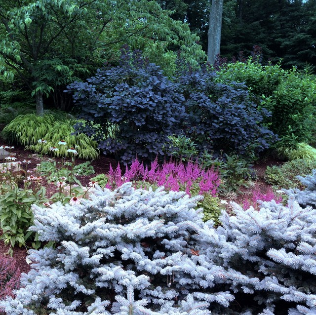 Gardens perennial and mixed borders eclectic new york by elaine yellen landscape design llc - Mixed style gardens ...