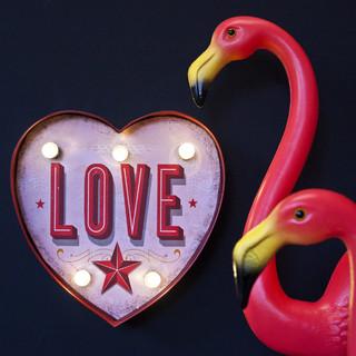 Novelty Lighting Fixtures : Fairground Love Heart Light - Novelty Lights - west midlands - by House Junkie