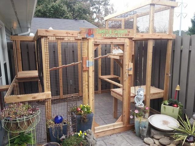 Cedar Cat Enclosure