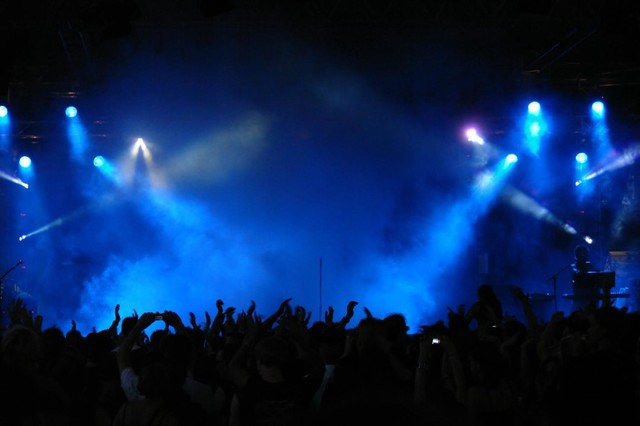 Cheering crowd at concert wall mural 18 inches w x 12 for Concert wall mural