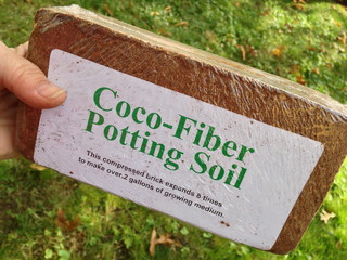 Soil smack down peat moss vs coconut coir compost wins for Topsoil vs potting soil
