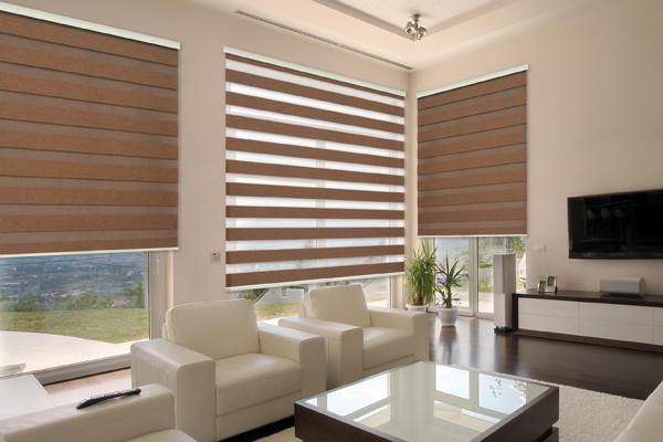 Neolux Dual Shades Rustic Dim Out Modern Roller
