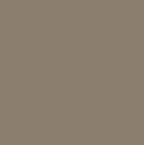 Paint Color SW7032 Warm Stone