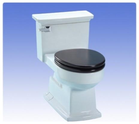 ms934304sf 12 lloyd ada compliant low consumption toilet