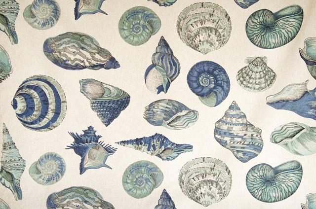Seashell fabric nautilus sea glass green blue aqua beach for Nautilus garden designs