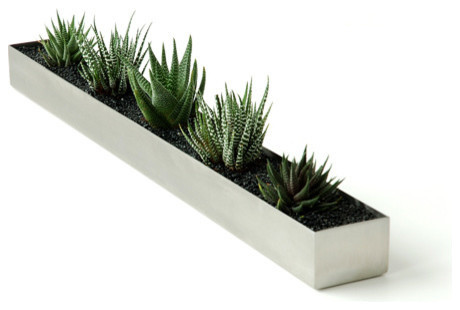 Fruit trough modern indoor pots and planters by for Design indoor plant pots uk