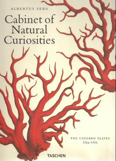 Cabinet of Natural Curiosities - Eclectic - Books - by Amazon