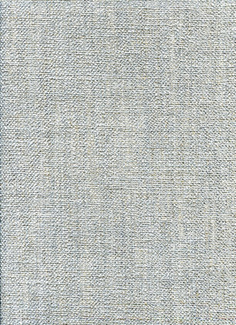 MAX TEXTURE GRAY Upholstery Fabric Other by Calvin  : upholstery fabric from www.houzz.com size 466 x 640 jpeg 199kB