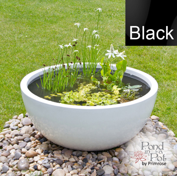 Semi shade pond in a pot kit with black fibreglass 72cm for Planting pond plants in containers